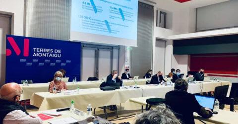 Conseil communautaire de Terres de Montaigu du 22 février 2021